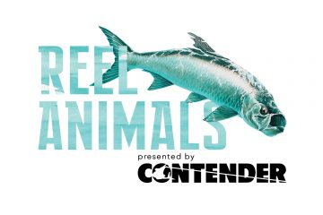 Reel Animals
