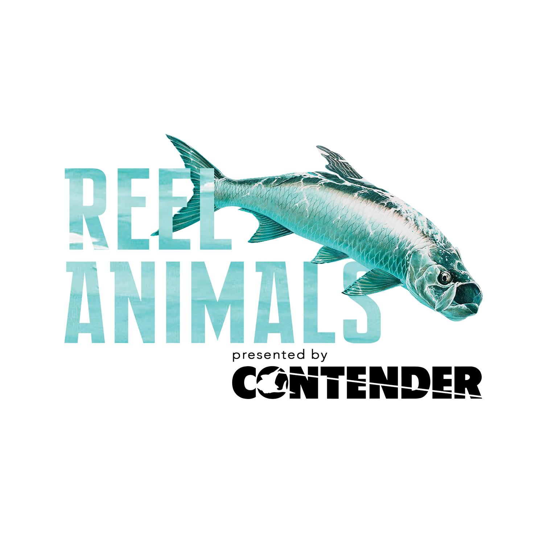 Reel Animals